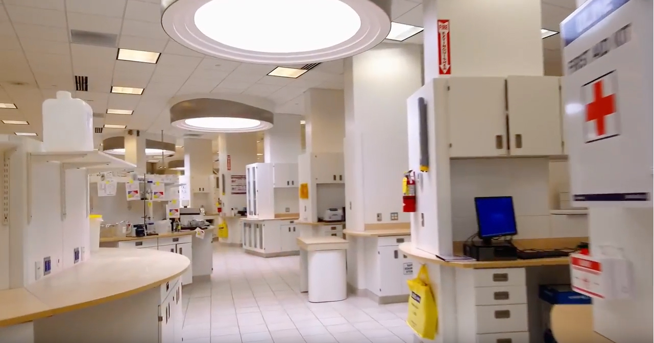 Interior Lab at Lee Bio Solutions